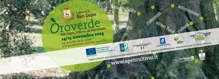 La raccolta delle olive e la produzione dell'olio novello. 14/15 novembre 2014 – San Lupo/BN