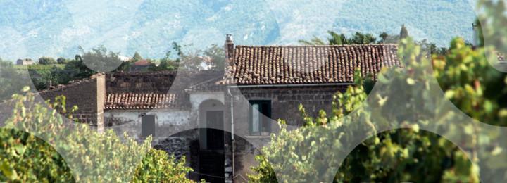 STRADE DI VINI: una nuova mappa di Castelvenere realizzata da studiosi, artisti, studenti e viticoltori in un'esperienza collettiva di forte valore sociale e culturale E-pub e documentario online!